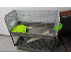 Large Indoor Rabbit Hutch on 2 levels
